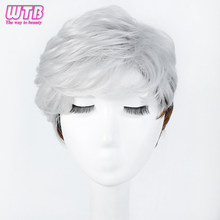 WTB Short Straight Wigs for Women Synthetic Silver Brown Ombre Hair with Heat Resistant Cosplay Wig(China)