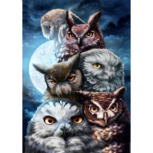 Full Square/Round Drill 5D DIY Diamond Painting Owl Moonlight Embroidery Cross Stitch  Home Decor Gift momoart diy 5d diamond painting owl animal cross stitch kit embroidery full square drill sale gift home decoration