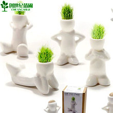 2016 promotion time limited sementes seeds radiation people plant potted bonsai grass doll cartoon office home decoration gift beautifying office bonsai grass pots planters mini