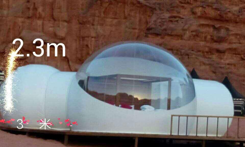 Transparent Inflatable Lawn Tent Bubble