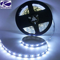 5m/roll IP20 Non Waterproof 5m 300 LED strip 5050 60LED/m 12V SMD Lamps flexible light cold white warm white red blue yellow RGB