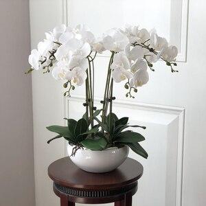Image 1 - 1 סט גבוה כיתה סחלבים הסדר לטקס סיליקון אמיתי מגע גדול גודל יוקרה שולחן פרח בית מלון דקור אין אגרטל