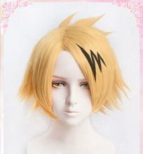 Haute qualité Kaminari Denki perruques mon héros académie résistant à la chaleur cheveux synthétiques Cosplay Costume perruque + perruque