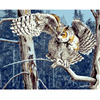 Framless Animal Picture On Canvas Owl Painting On The Wall Decoration Oil Painting By Numbers Hand