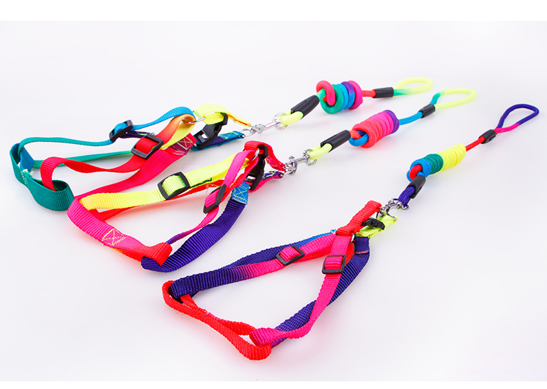 2017 New Dog Leashes Harness Sets Rainbow Color Nylon Leads Leashes Harness Dog Accessories Free Shipping Small Size S M