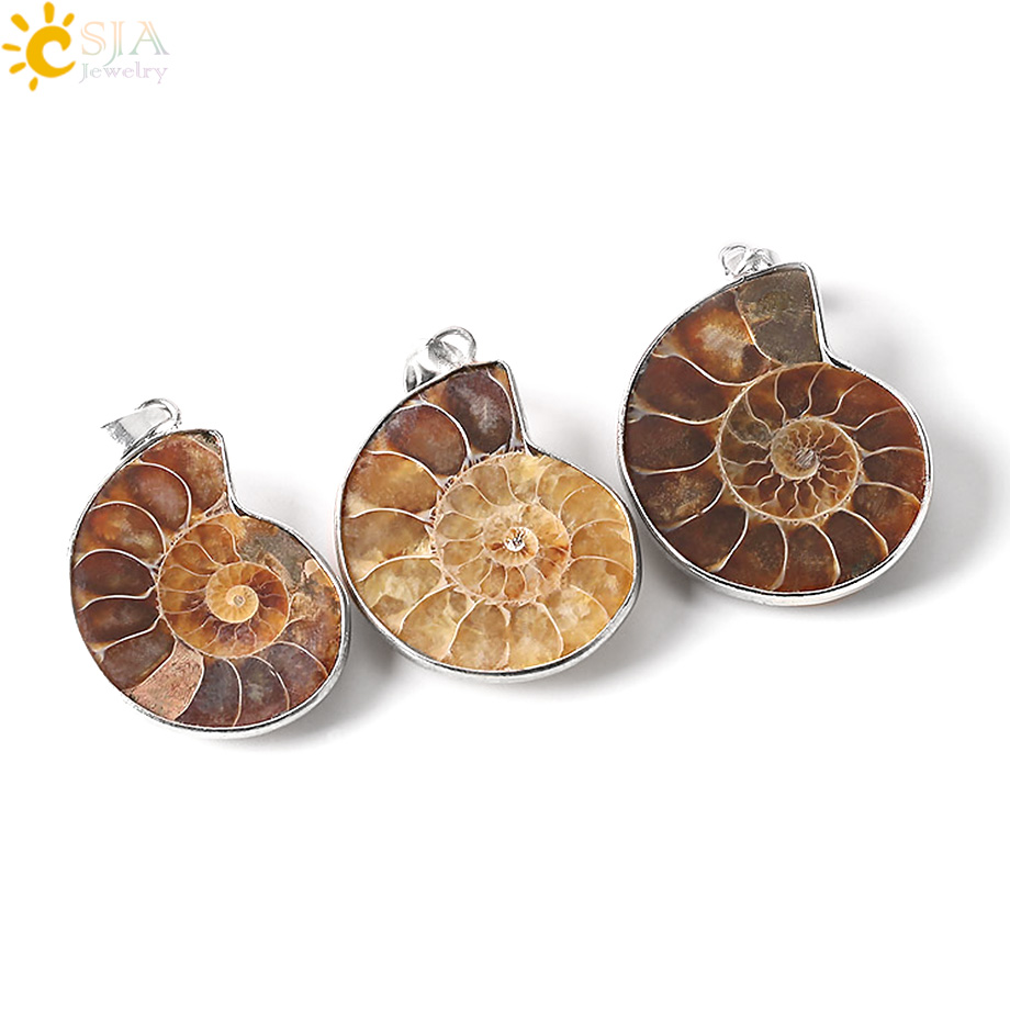CSJA Natural Stone Ammonite Fossils Seashell Snail Pendants