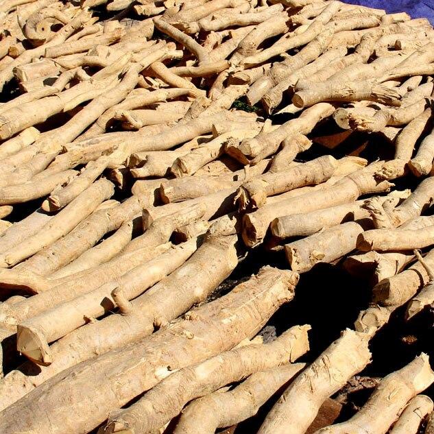 Mejorar el sexo 500g salvaje tongkat ali productos sexuales para hombre mejora a base de hierbas.jpg