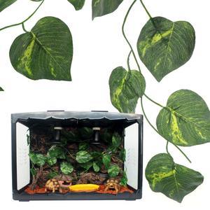 Best Top Reptile Terrarium Habitat Brands