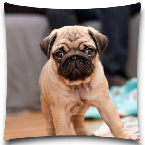 A dog on the floor Cushion Cover Cotton Polyester Pillow Case 5 Size 9 Style Christmas Gift Cushion Cover Sofa Bed Decor