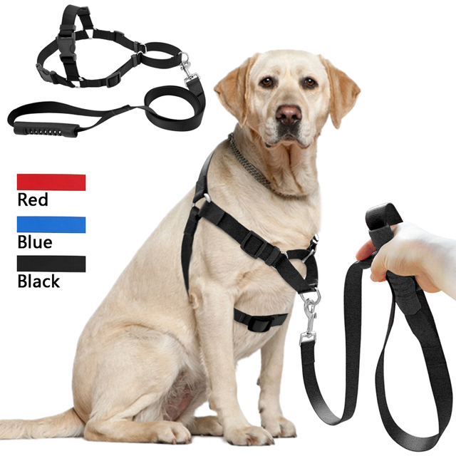 Nylon Dog Harness Leash Set No Pull Large Dog Harness Training Walking Leads For Medium Large_640x640 nylon dog harness leash set no pull large dog harness training