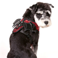 New Cloth Dog Harnesses Comfortable Halloween Individual Bat Wings Harnesses For Small And Medium Size Dog