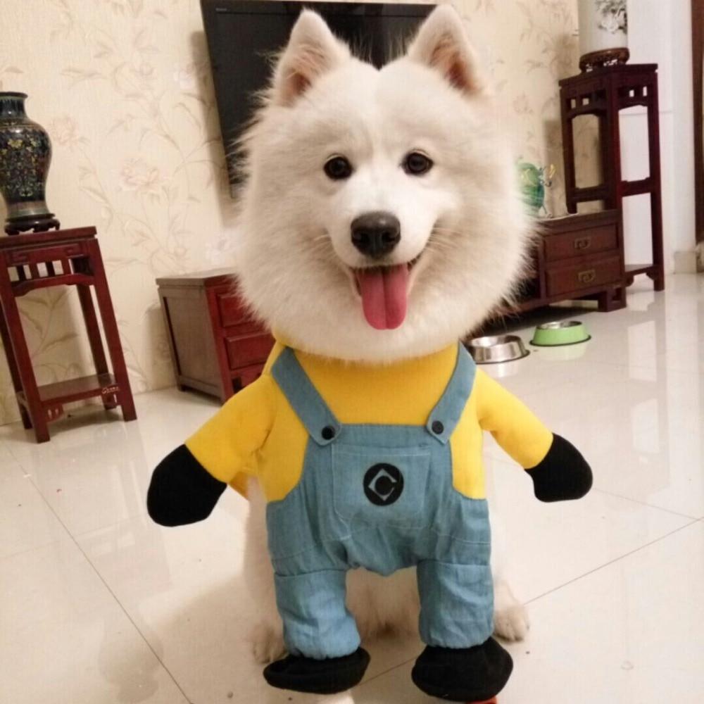 2016 Hot Sale modelling of Minions micky Dog Costume Novelty Funny ...