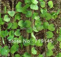 60pcs 2.4M artificial scindapsus aureus leaves vine Malus spectabilis vine grape vine plants home garden decoration