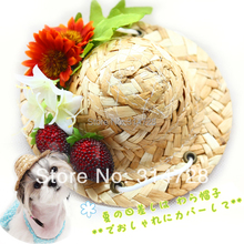 Free shipping adjustable dog hat strawberry small pet cat cap for dogs accessories gorras para perros mascotas