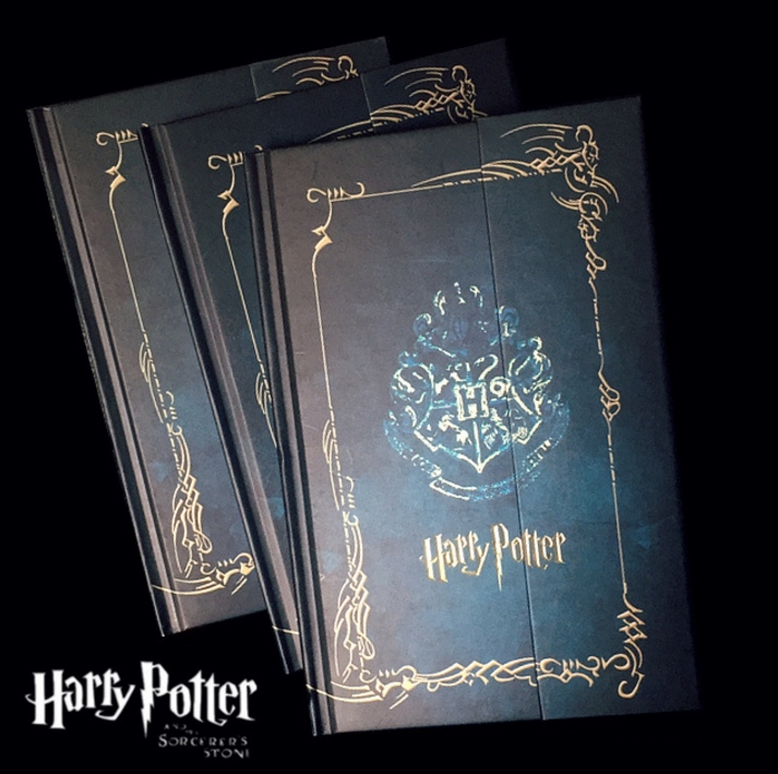 10 PCS/LOT Harri Potter Diary Notebook with 2017-2018-2019 Calendar Retro Hard Cover Notepad Agenda Planner Stationery Gifts