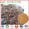 100% Natural Grifola frondosa Extracts powder  10:1  100g