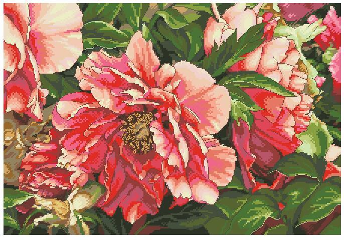 cs-2074 Cross Stitch Kit Coral Peonies Peony Pink Flower Flowers dim 70-35298 35298