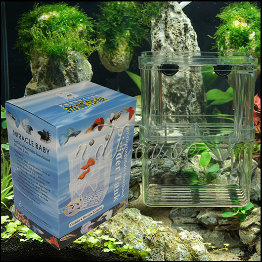 High quality small fish tank buy cheap small fish tank for Cheap small fish tanks