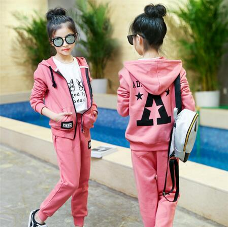 Children Sport Suits Teenage Girls Clothing Sets 2018 Spring Autumn Kids Tracksuits Hooded Coat +Pants 2pcs Clothes