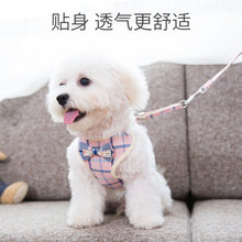 Small and Medium Dog Chain Teddy Beauty Walking Rope Cat Chest Back Belt