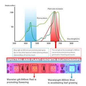 Image 3 - Pianta coltiva le luci 1m 2m 3m 4m 5m impermeabile spettro completo LED striscia fito lampada fiore rosso blu 4:1 per serra idroponica