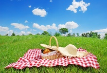 Laeacco Spring Picnic Blue Sky White Cloud Grassland Trees Background Customized Photographic Backdrops For Photo Studio