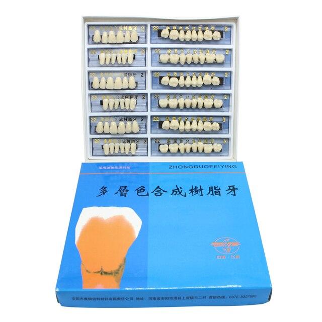 US $4 99  84pcs/box Size 22/23/24 Acrylic Resin Denture Dental Teeth  include Upper Lower A2 Teeth Whitening Tooth Model Dental Materials-in  Teeth