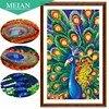 Meian Special Shaped Diamond Embroidery Animal Peacock Full DIY Diamond Painting Cross Stitch Diamond Mosaic Bead