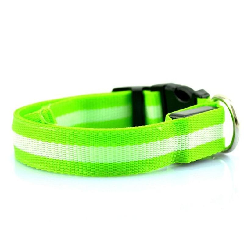 LED Safety Dog Collar