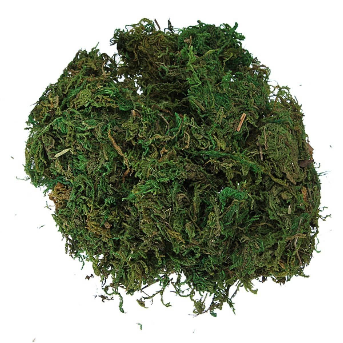 яванский мох на алиэкспресс