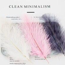 2Pcs Natuurlijke Struisvogelveren Wit Roze Blauw Fotografie Accessoires Diy Decoratie Voor Armband Ring Sieraden Lippenstift Cosmetische