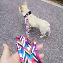 Pet Product For Dog Collar leash Nylon High Quality Multiple Series Colorful Fashion New Design Adjustable