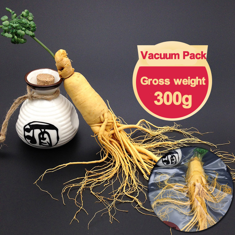 Changbai Fresh 300g Top Grade Vacuum Pack Panax Ginseng Root 8 Years Old Body Relaxation changbai mountain girl