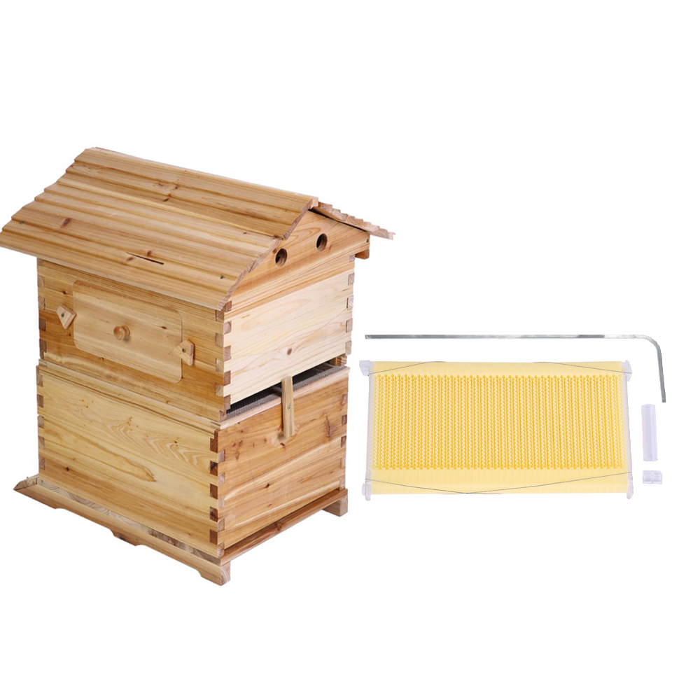 Flow hive with auto flow frames new type beehive for Garden ...