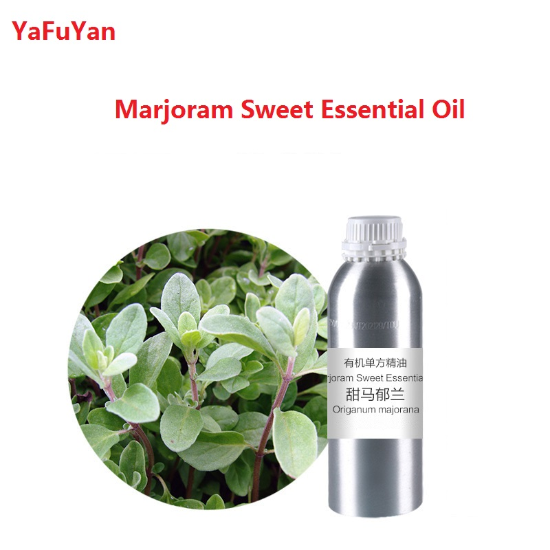 Cosmetics 50ml/bottle Marjoram Sweet Essential Oil organic cold pressed vegetable plant oil Scraping, massage skin care creativity essential oil blend true botanical 100% pure and natural undiluted high quality therapeutic grade blend of rosemary clary sage hyssop marjoram cinnamon 5 ml