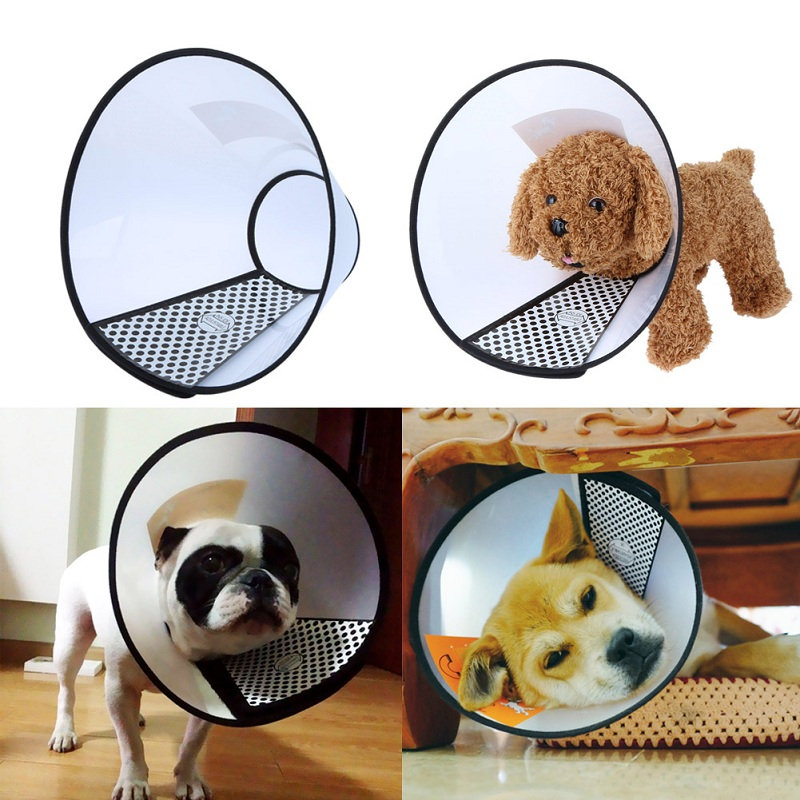 New Dog Collar Pet Wound Healing Medical Beautify Shower Protective Collar Tool Free Shipping MTY3