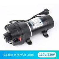 DC 110V 220V micro miniature AC electric diaphragm self priming pump water heater circulating pressure increase pump