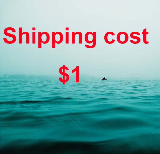 Postage Cost Shipping Cost Air Freight Difference Saso Certificate