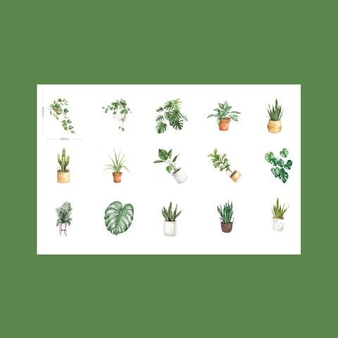 20 10packslot adoravel verde vida oxigenio