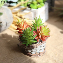 Buy indoor floor plants and get free shipping on AliExpress.com