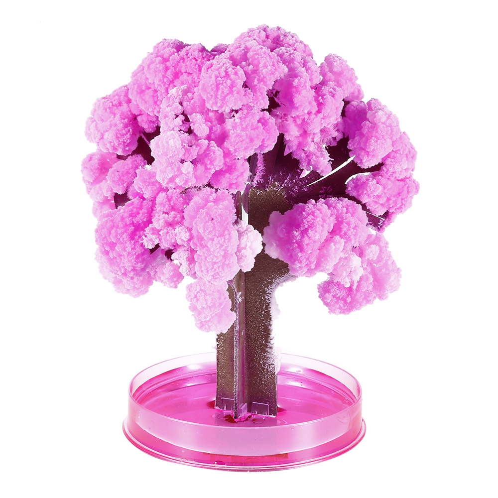Pink Magic Paper Growing Blossom Tree Japanese Sakura Cherry Blossom