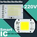 Smart IC LED Lamps Chip led bulb 220V 5W 10W 20W 30W 50W 90W Cold White/Warm White For Outdoor FloodLight