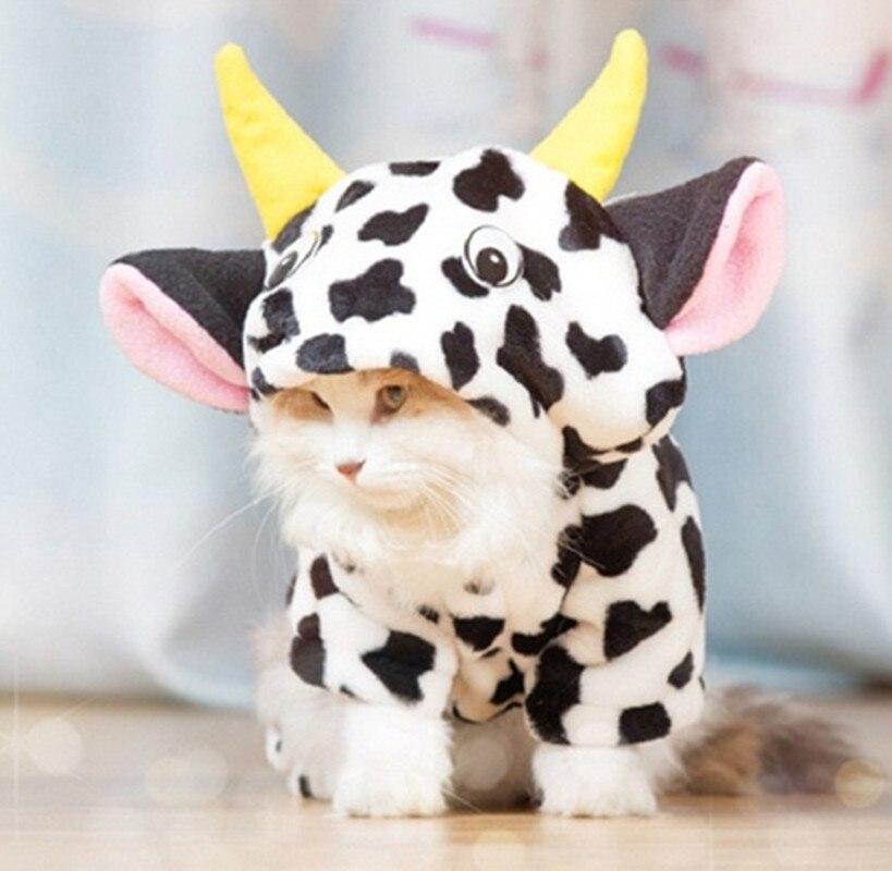 зима pet cat одежда теплый щенок