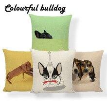 Pillow Cushion Meditation Boston Terrier Cases Balloon-Tower Animal Euro for Teens Throw