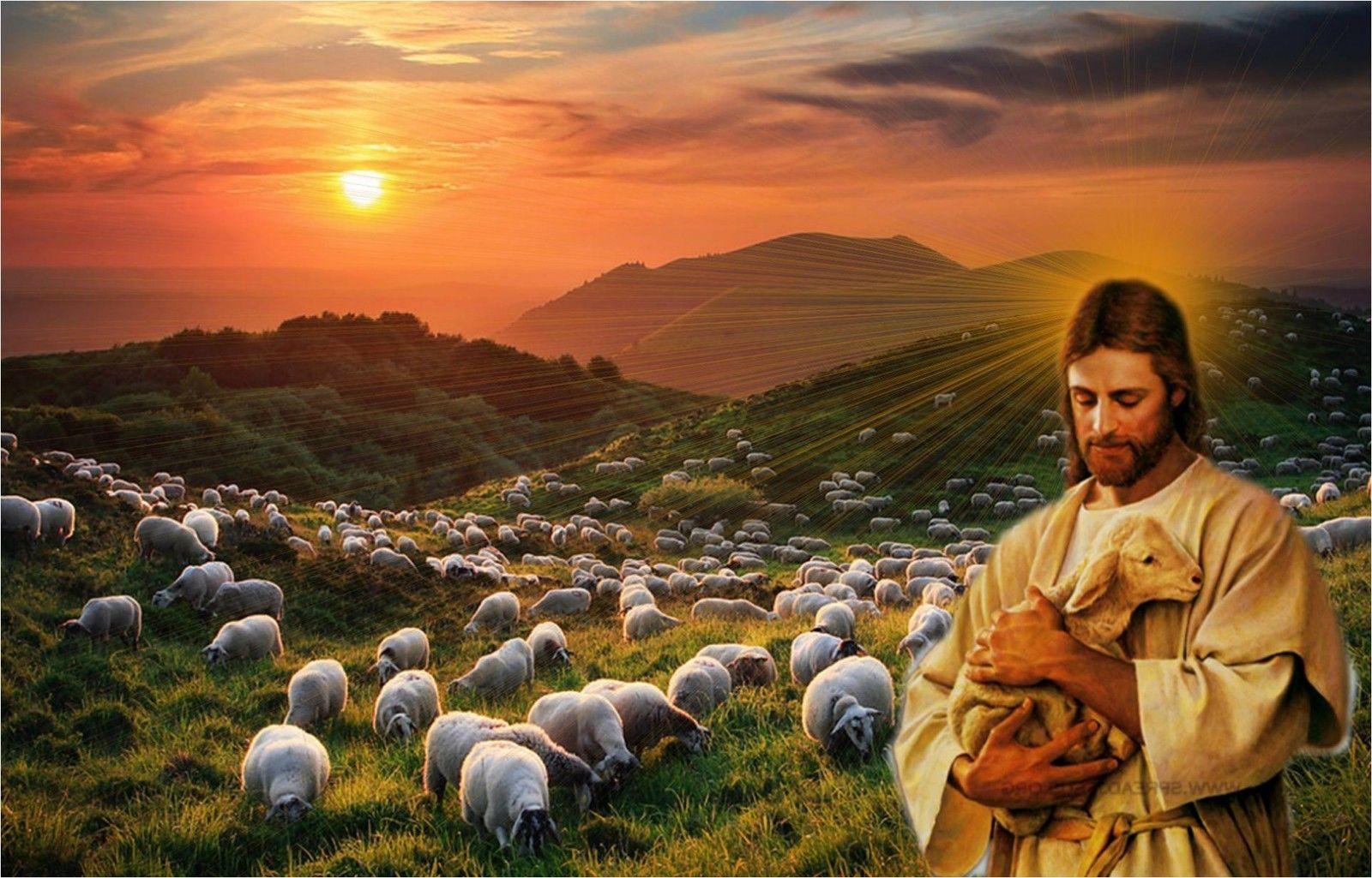 легко пастух из библии фото война без фронтовой