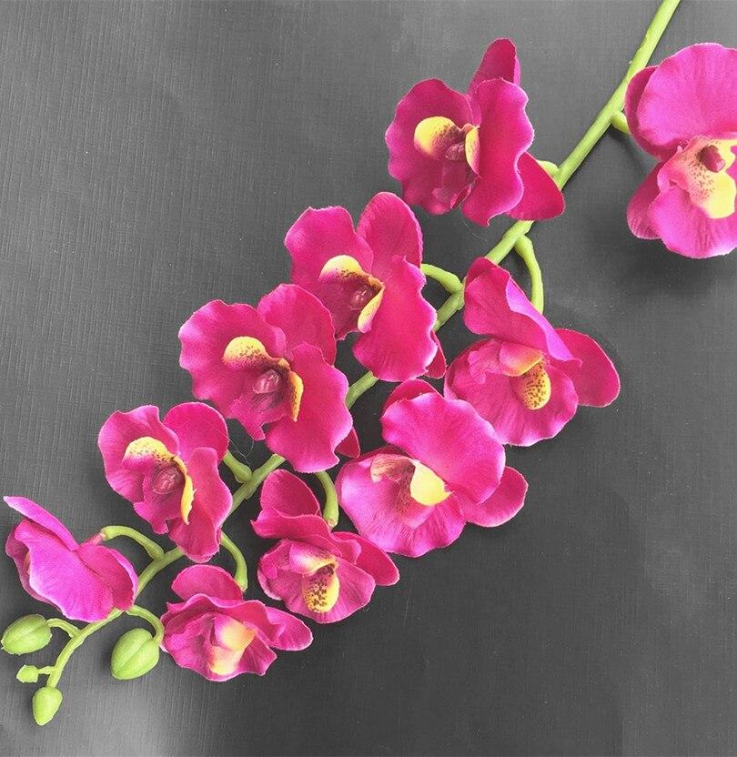 Orhideja Phalaenopsis 10 krema za glavo / oranžna / vroče roza / - Prazniki in zabave - Fotografija 4