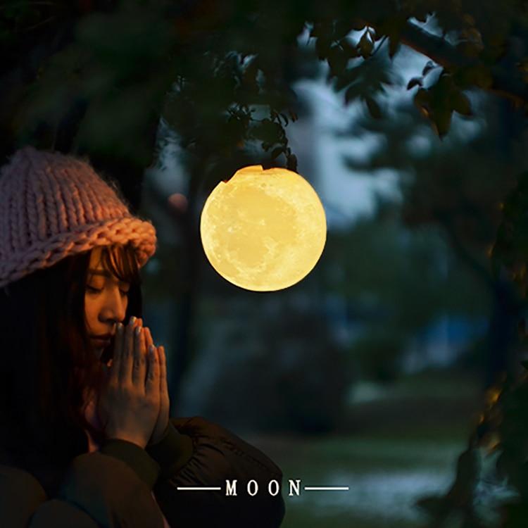 3D print de maan maan lamp lamp opladen creatieve prive custom gift maan nachtlampje Luna - 2