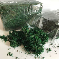 350g Bag Keep Dry Real Silk Flower Green Moss Wedding Plants Vase L Turf Accessories For