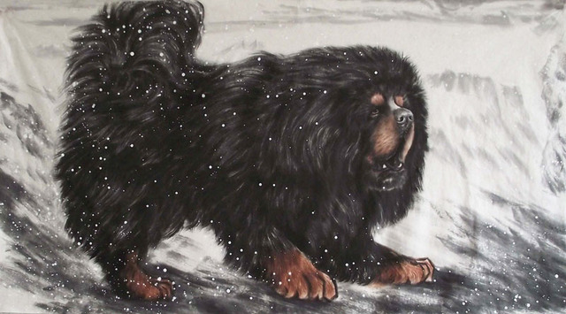 Tibetan Mastiff Dog Diy 5d Diamond Painting Cross Stitch