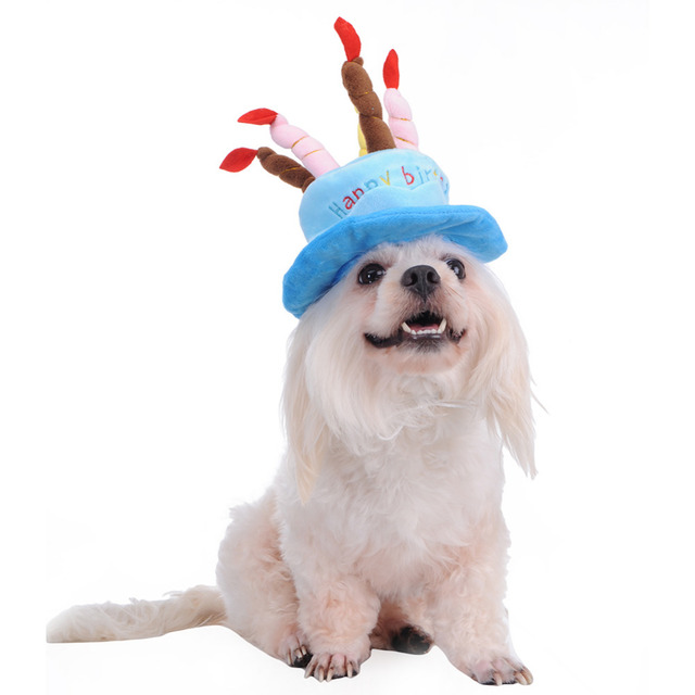 Cute Birthday Cake Caps Winter Hat For Pet Dogs Cats Hats Costumes A With Candles Shaped Dog Supplies